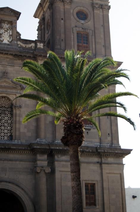 Gran Canaria-0098