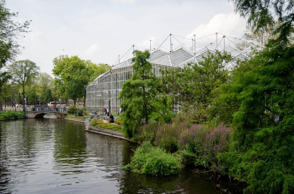 Hortus Botanicus Amsterdam-20