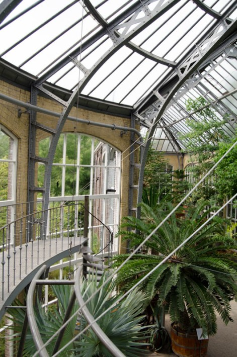 Hortus Botanicus Amsterdam-26