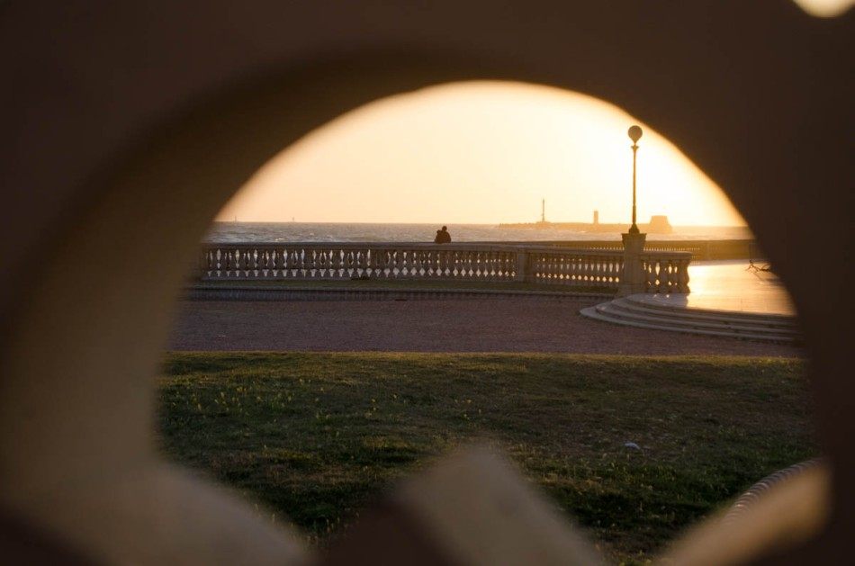 Livorno photo-18