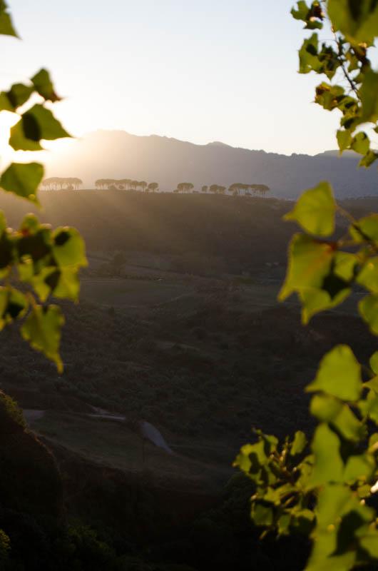 Rondreis Andalusië Ronda-33